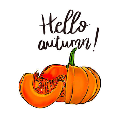 Hand drawn illustration with pumpkin and letters. Colorful background. Poster design with food and english text. Hello autumn, postcard. Decorative background suitable for printing Фото со стока