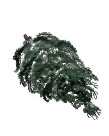Christmas tree illustration on white background.