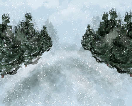 Winter forest landscape with spruce trees and mountains.