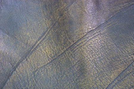 Black genuine leather in full frame Stock Photo - 22401324