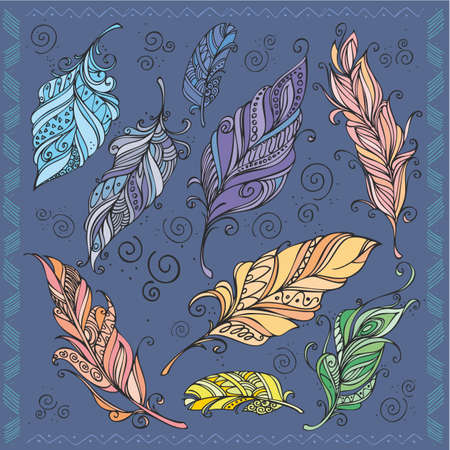 delineation: colored feathers Illustration