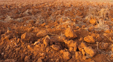 Roughly plough red earth Stock Photo - 5175753