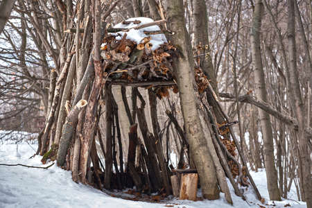 A hut of sticks in the winter forest