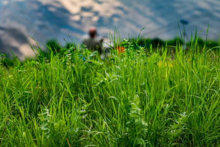 Green grass on the background of the fisherman by the river 2019 Banque d'images
