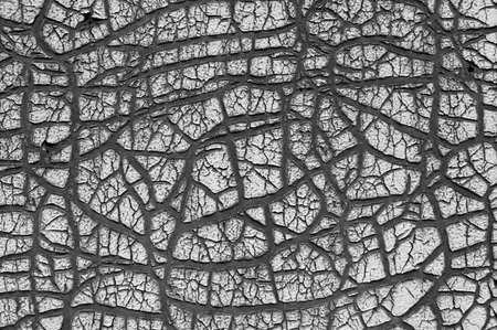 Old cracked paint texture. Damaged black surface. Close up grunge wall background Zdjęcie Seryjne