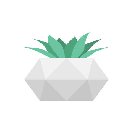 Succulent in concrete geometric pot. Vector isolated trendy flower