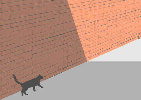 black cat around the brick wall