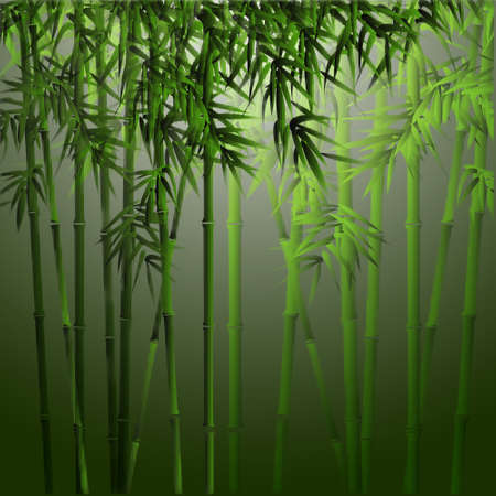 Realistic vector bamboo.Background in asian style Vector