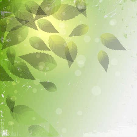 Ligth grunge background with green leaves.vector eps10 Illustration