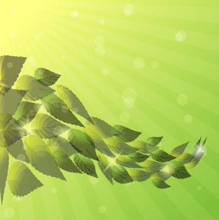 Summer background with green leaves.Vector eps 10 Vector