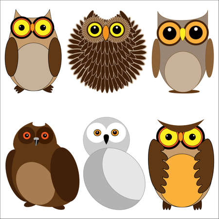 Set of different owls. Vector