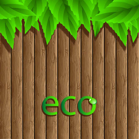 dewy: Eco vector.Wooden background with green leaves