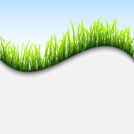 Fresh background with grass.Vector eps10 Vector