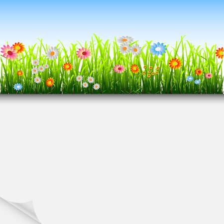 Summer  background with grass and flowers.Vector eps10