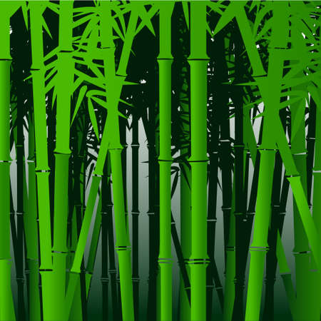 Decorative bamboo.Vector background in asian style Vector