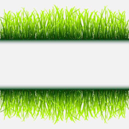 Green grass frame.Vector eps 10 Stock Vector - 12493964
