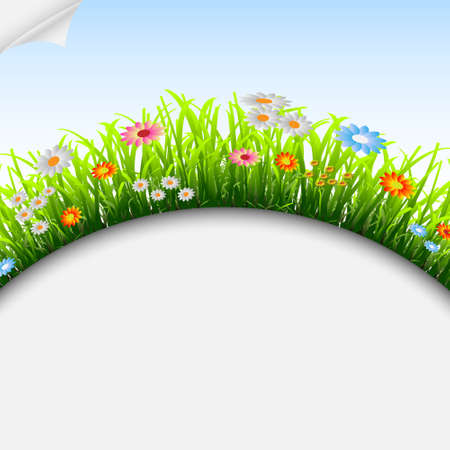 Seasonal background with grass and flowers.Vector eps 10 Stock Vector - 12493963