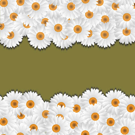 Camomile floral borders.vector eps10 Stock Vector - 12825724