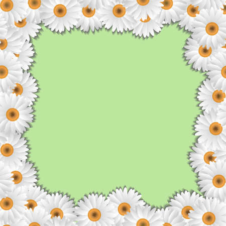 Camomile floral frame vector eps10 Stock Vector - 12825728