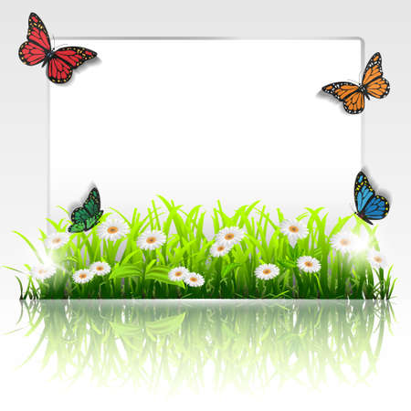 Natural frame with grass,chamomiles and butterflies.Vector eps 10