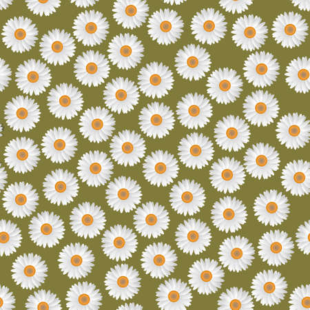 herbage: White camomiles.Vector seamless pattern  Illustration