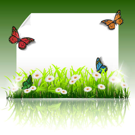 Paper summer frame with flowers and butterflies.Vecror eps10 Vector