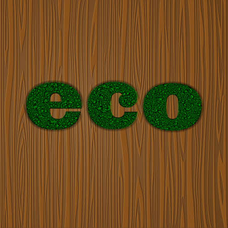 The word Eco made of  grass on wooden background.Vector eps10 Vector