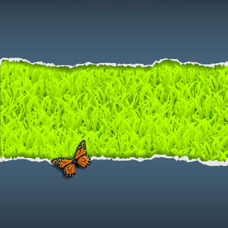 Border of torn paper with grass and butterfly Vector