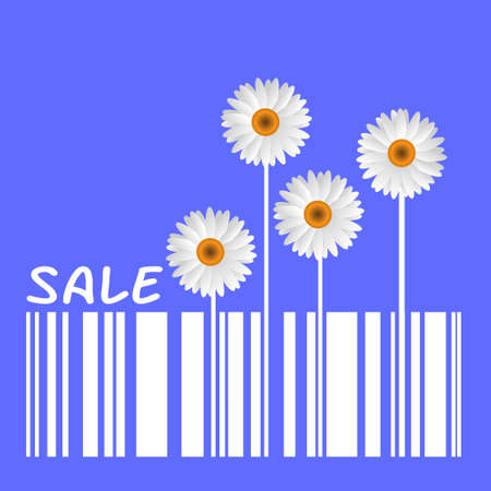 big daisy:  Summer Sale with Camomiles and barcode