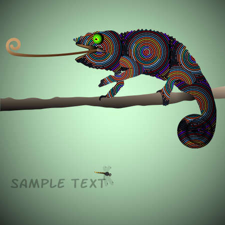 chameleon:  Vector background with Chameleon  Illustration