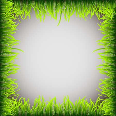 Grass frame.Vector eps 10 Stock Vector - 13277534