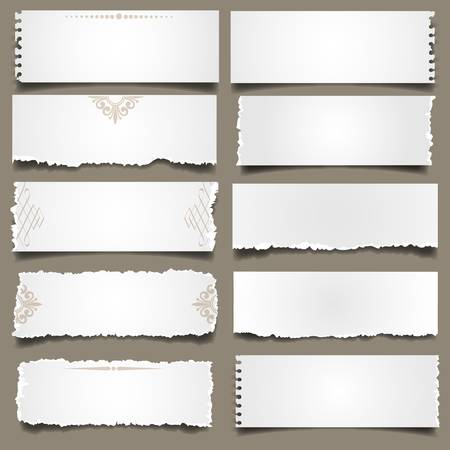 torned: Ten notes paper .Vector eps 10