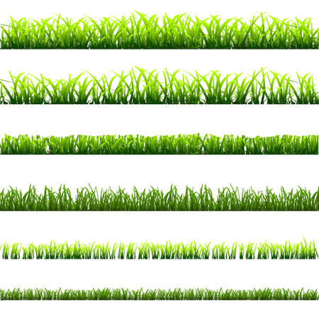 6 different types of green grass for design. Stock Vector - 13553737