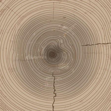 Madera de fondo de la sección Ilustración de vector
