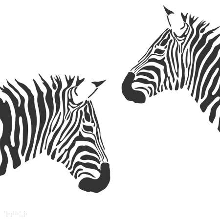 animaux zoo: zèbre Illustration