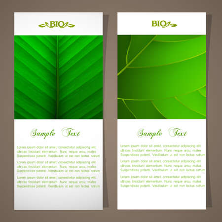saturate: Two bio banners