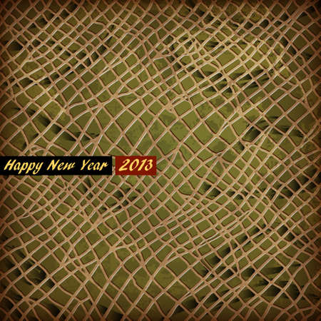 texture of skin Snake - symbol 2013 New Year Vector
