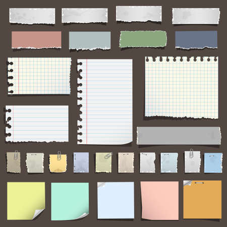 torned: Collection of various notes paper. Vector eps10