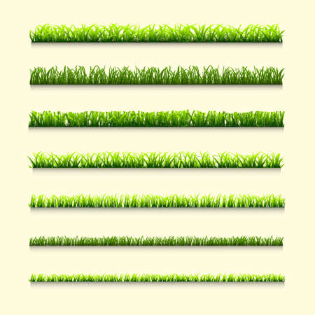 Seven different types of green grass for design