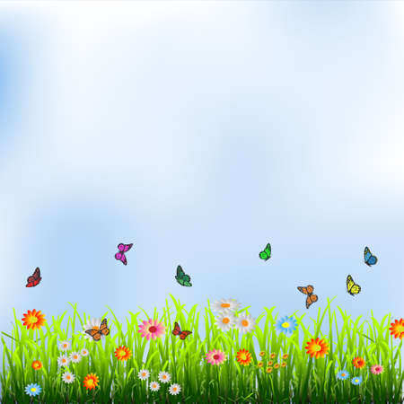 Green grass, flowers and butterflies ]illustration