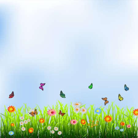L'herbe verte, des fleurs et des papillons] illustration Vecteurs