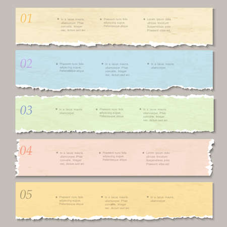 paper graphic: Torn paper numbered banners  Design template for infographics, website layout