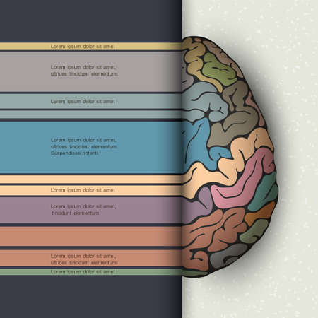 medical scan:  Concept of human brain. Futuristic vector illustration Illustration