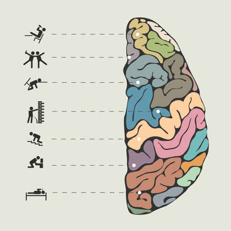 Funny concept of human brain. Vector illustration Vector