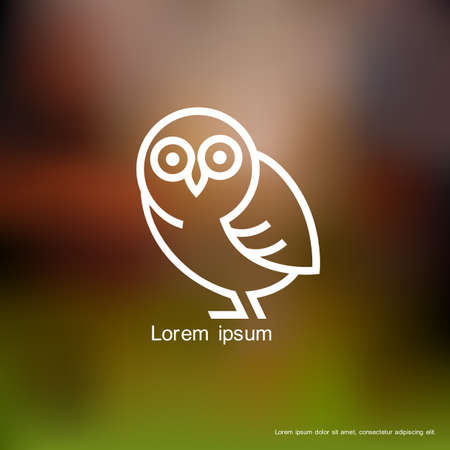 Stylized owl  Vector background Vector
