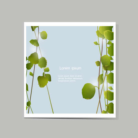 Vector card with green leaves Stock Vector - 21722858