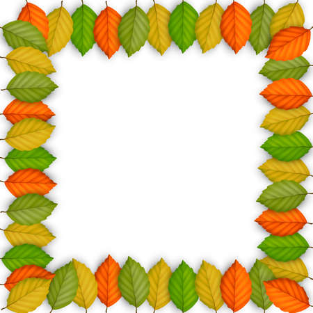 Frame of colored leaves. Vector EPS10 Stock Vector - 23061441
