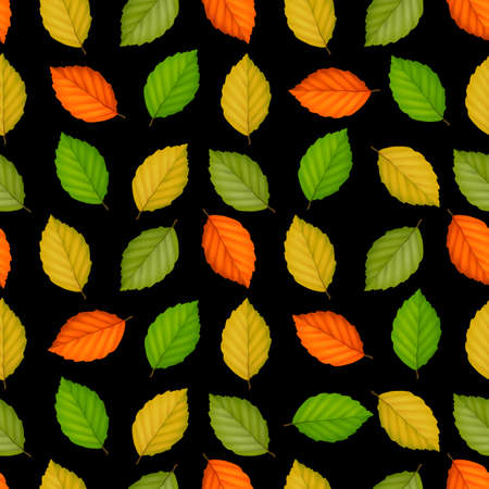 Seamless pattern with colored leaves on black. Vector background