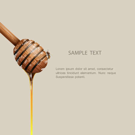 Honiglöffel mit Biene. Standard-Bild - 29255862