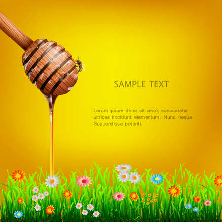 Honey dipper with bee and green grass with flowers Vector